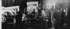 Swinging Cats, General Wolfe, May 3rd 1980